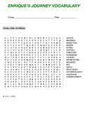 ENRIQUE'S JOURNEY VOCABULARY (Word Search)