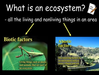 ENVIRONMENTAL SCIENCE Ecosystems CH 4 Section 1