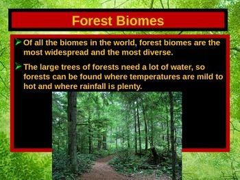ENVIRONMENTAL SCIENCE FOREST BIOMES