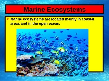 ENVIRONMENTAL SCIENCE MARINE ECOSYSTEMS POWERPOINT WITH FILL IN NOTES