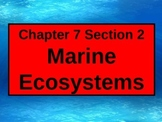 ENVIRONMENTAL SCIENCE MARINE ECOSYSTEMS POWERPOINT WITH FI