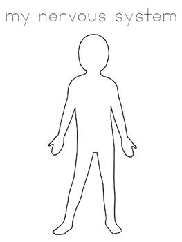 ENY ELA Human Body