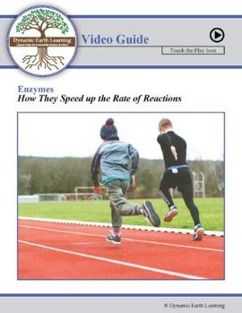 Biology: ENZYMES - FuseSchool Video Guide