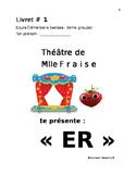 ER practice workbook livret francais verbs Er
