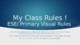 ESE Visual Classroom Rules *Editable*