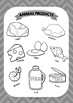 ESL Animal products vocabulary posters for years 3 & 4