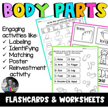 ESL Body Parts - Flashcards & Worksheets