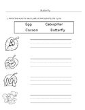 ESL Butterfly Theme worksheets x2