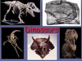 ESL Dinosaurs - Dinosaur PowerPoint