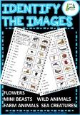 ESL / EAL / ELL Identify the Images