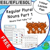 ESL EFL ESOL Regular Plural Nouns Part 1 One-Hour Lesson Plan