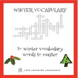 ESL - ELL Winter Vocabulary Crossword Puzzle
