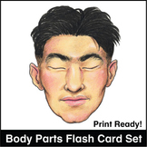 ESL Flash Cards-Body Parts