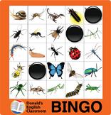 ESL Games-Insect Bingo