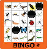 ESL Games-Insect Bingo