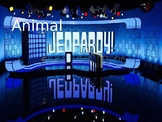 ESL Jeopardy game - Animals. Fully editable template