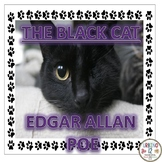 The Black Cat by Edgar Allan Poe Worksheet
