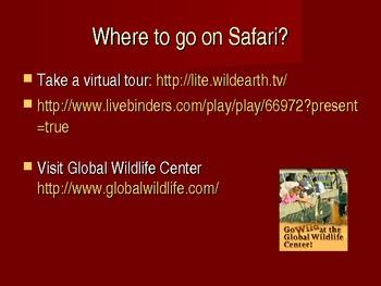 """ESL """"Let's Go On Safari"""" for K-2 ELLs"""