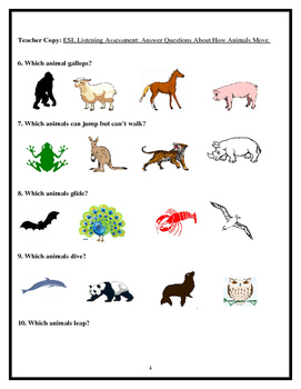 ESL Listening Assessment: Answer Questions About How Animals Move