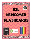 ESL Newcomer Flashcards