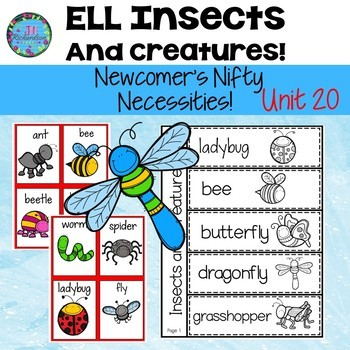 Insects & Creatures  ESL ELL