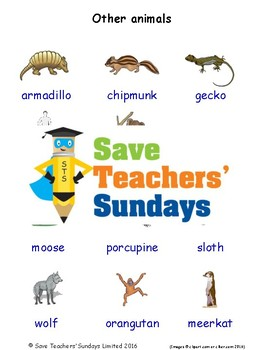 ESL Other Animals Worksheets, Games, Activities and Flash Cards (with audio)