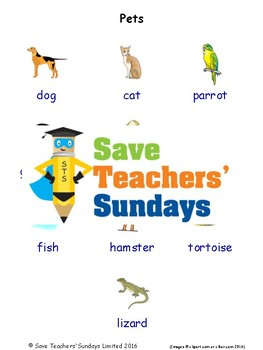 ESL Pets Worksheets, Games, Activities and Flash Cards (with audio)