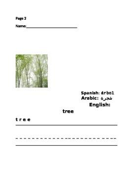 ESL SCIENCE KINDERGARTEN HOMEWORK :TREES