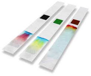 ESL Science - Splitting Colours - Chromotography