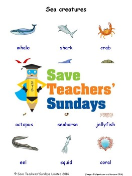 ESL Sea Creatures Worksheets, Games, Activities and Flash Cards (with audio)