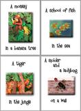 ESL Teacher's Flashcards in the Bundle