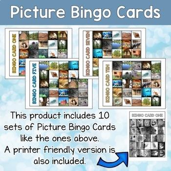 Animal Homes Printable Bingo Cards