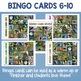 Types of Birds Printable Bingo Cards