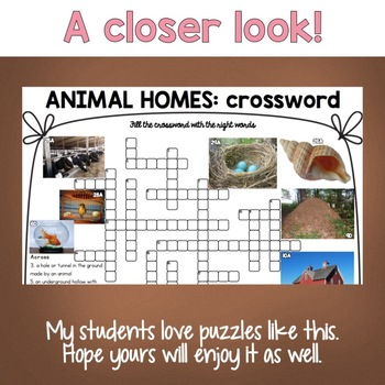 Animal Homes ESL/ELL Activity Crossword Puzzle