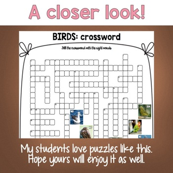 Types of Birds Crossword Puzzle