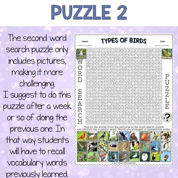 Types of Birds Word Search Puzzles