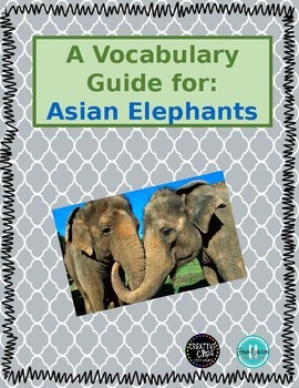 ESL Vocabulary Guide: Asian Elephants
