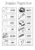 ESL Vocabulary: Vegetables Domino pdf