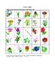 ESL/LA Flower Picture Bingo and Hidden Words Game