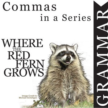 WHERE THE RED FERN GROWS Grammar Commas in a Series (List)