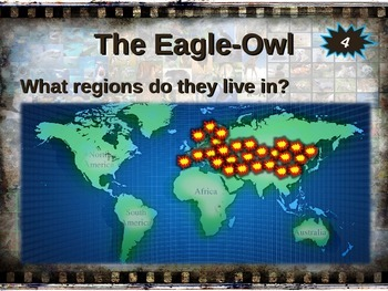 EURASIAN EAGLE-OWL: 10 facts. Engaging PPT (w links & free graphic organizer)