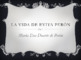 EVITA DUARTE DE PERON- WEBQUEST