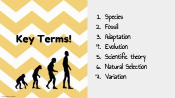 EVOLUTION: Charles Darwin and Natural Selection Slides!