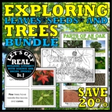 EXPLORING LEAVES, SEEDS, AND TREES BUNDLE (The Forest Biome)