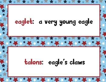 Eagle Cam Observation Kit