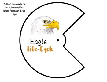 Eagle Life-Cycle with Spinner & Montessori 3-Part Cards