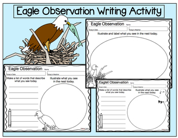 Eagle Observation Writing Activity