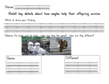 Eagle response sheet
