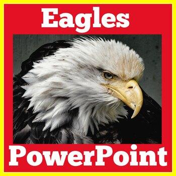 Eagles PowerPoint | Eagles Activity | Birds Science
