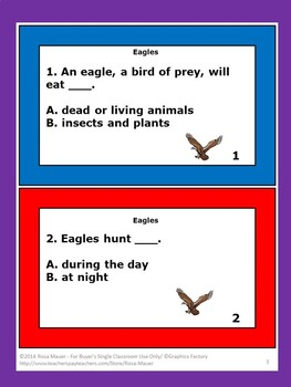 Eagles Nature's Children